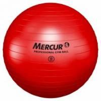 PROFESSIONAL GYM BALL 55CM