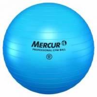 PROFESSIONAL GYM BALL 65CM
